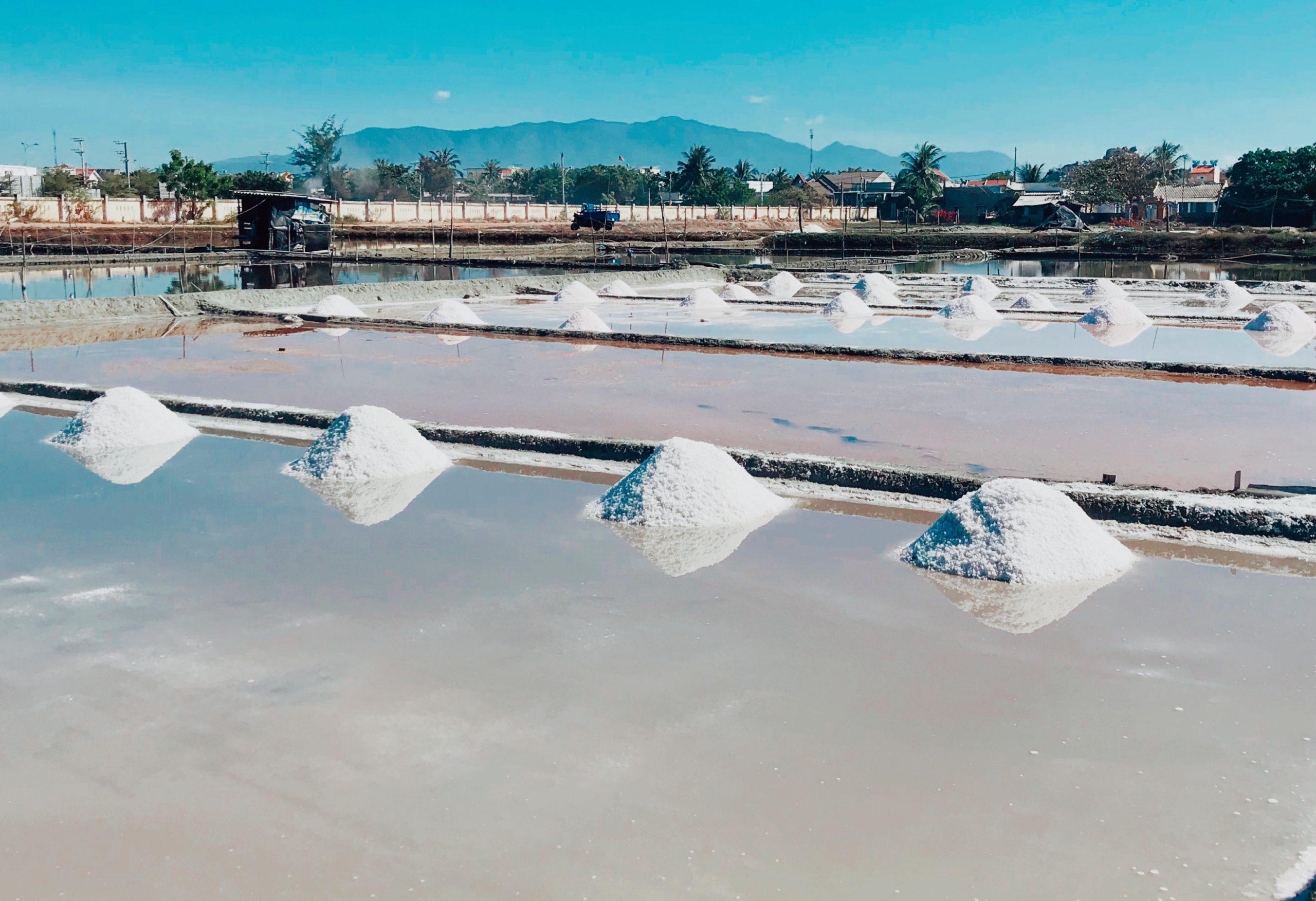 Cánh đồng muối Ninh Hải