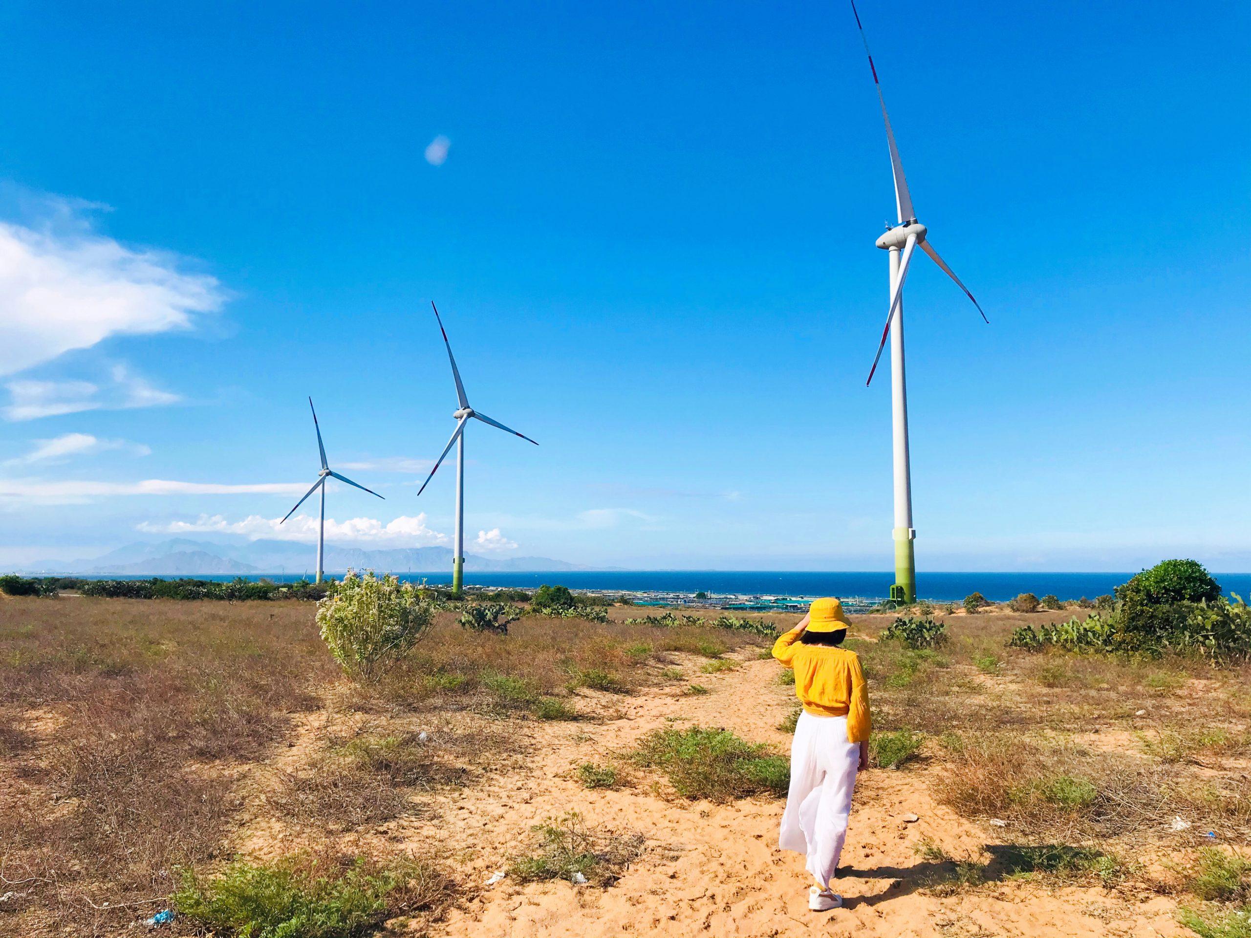 Điện gió Mũi Dinh