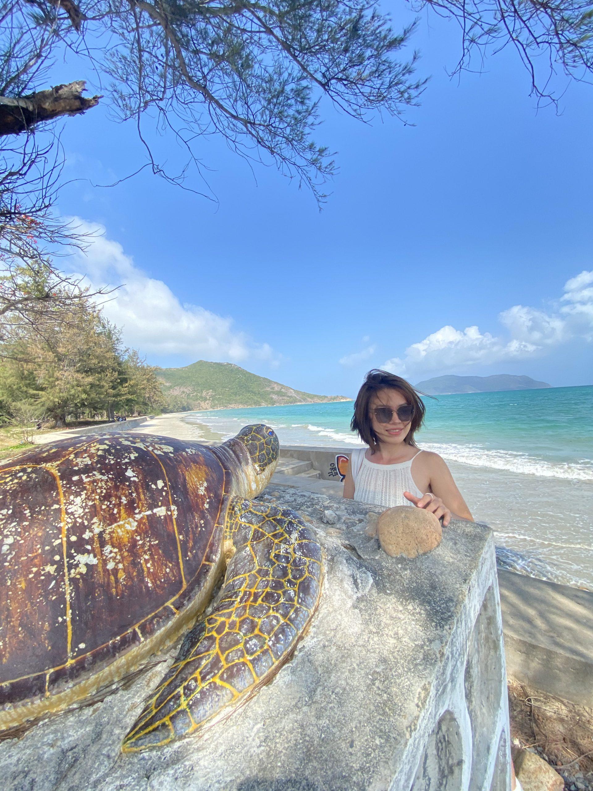 Khu bảo tồn Rùa Biển Côn Đảo Vũng Tàu
